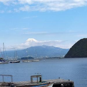 【1日目】ゴールデンウィークにお勧め!1泊2日西伊豆戸田漁港 ドライブと釣りと海の幸を楽しむ