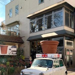 ミニクーパーが目印!練馬にある渋谷園芸の本店へ行ってみた!
