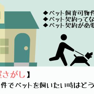【お部屋さがし】賃貸物件でペットを飼うにはどうする?