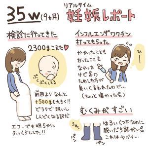 【35w~】9ヶ月妊娠レポ