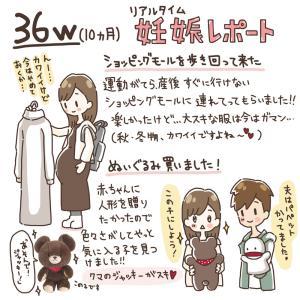 【36w~】10ヶ月妊娠レポ