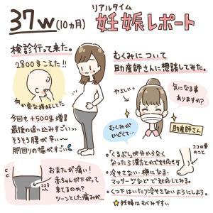 【37w~】10ヶ月妊娠レポ