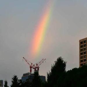 虹を見た seen rainbow? おはよー good morning!