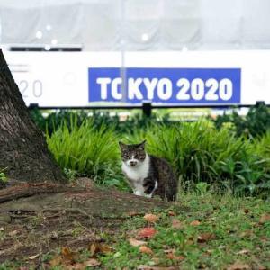 (再掲) TOKYO 2020