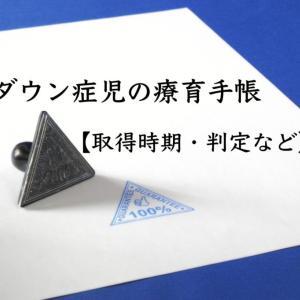 ダウン症児の療育手帳【取得時期・判定など】