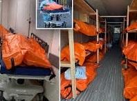 ウィルス 東京再拡大傾向 またニューヨークでは3月の遺体がまだトラック積のまま