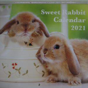楽天で買ったかわいい来年のカレンダー