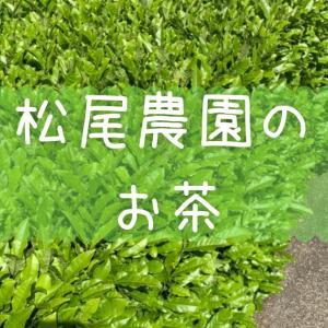 松尾農園のお茶の収穫