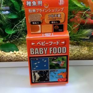 ベタの赤ちゃんを観察してみました!&稚魚餌購入🥰
