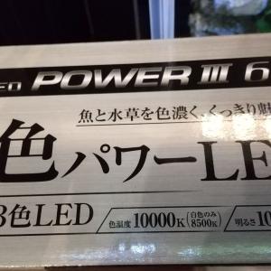 購入した照明について♪