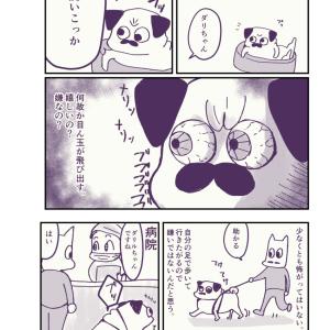 【漫画】動物病院が好き(?)すぎるパグ