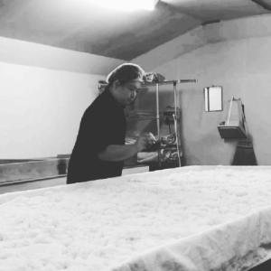 時間差ですが先日の蒸してからの種切り【麹菌の胞子を蒸し米に散布して付着させる作業】風景です🌾...