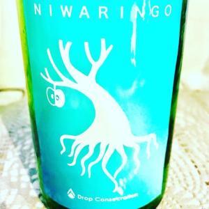 「岩清水NIWARINGO2020生原酒」 使用酒米の二割を麹とし、リンゴ酸を生み出す酵母で仕込んだ日本酒(二割、リンゴ酸でNIW...