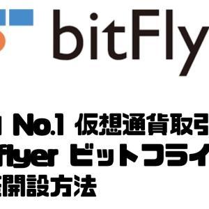 国内 No.1 仮想通貨取引所 bitflyer ビットフライヤー わかりやすい 口座開設方法
