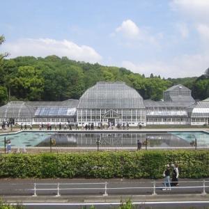 東山植物園・新しい温室に入ってみました