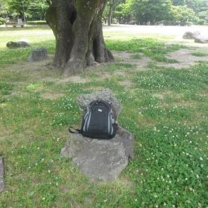 名古屋城の私の指定席