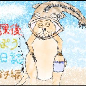放課後ていぼう日誌の陽渚が釣ったマゴチは、オーストラリアでも釣れる
