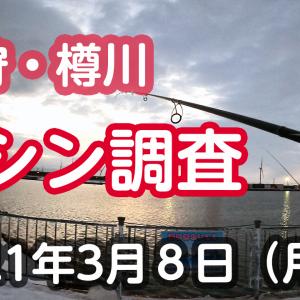 2021.03.08 樽川ニシン