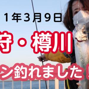 ニシン釣れました!2021年3月9日 石狩・樽川、チップヤード