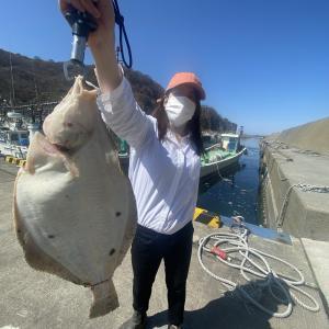 日本海で狙い大型マガレイ