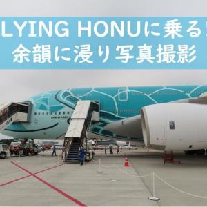 ANA A380チャーター便への搭乗~降機後と帰路~
