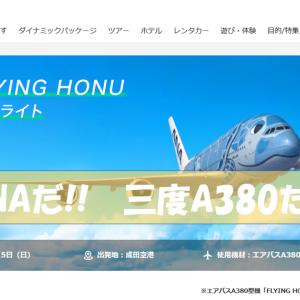 第3弾開催 ANAのA380に搭乗できるチャーターフライト