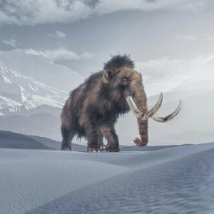 【その他6】氷河期ピークの就職活動体験談