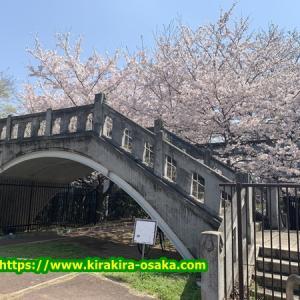重要文化財 毛馬第一閘門(こうもん)と【長柄河畔地区】の桜を散策