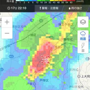 『豪雨と雨雲レーダー』とか
