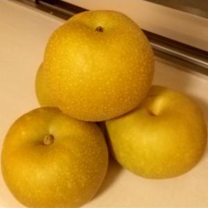 『梨』とか