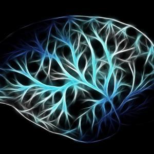 衛生管理者の過去問の出題傾向を徹底分析!労働生理 【神経系】