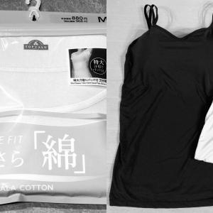 【イオン】ピースフィット極さら綿&【MUDE】美盛りブラキャミの着用感レビュー