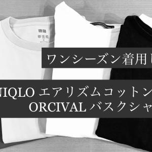 ワンシーズン着用した【ユニクロ】エアリズムコットン&【オーシバル】バスクシャツの状態