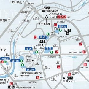 どこ走っても富士山ツーリング⑦