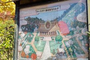 京都の史跡・神社仏閣の紅葉巡り 勝林院&宝泉院