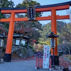 京都の史跡・神社仏閣の紅葉巡り 日吉大社