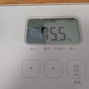 【特別編】フィットボクシング2をプレイ 初日【PTダイエット】