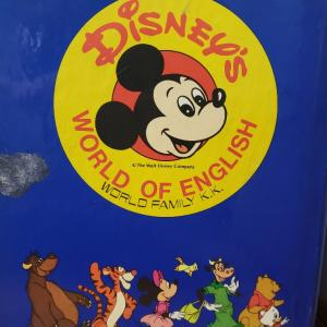 DWE挫折!失敗の実体験から学ぶ!ディズニー英語システムを続けるポイント3つ!