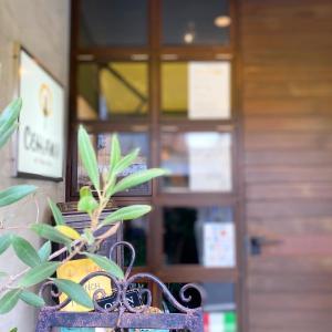 吹田ランチ 美味しいパスタのお店♬