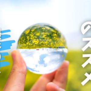 水晶玉を使えば、幻想的な写真が撮れちゃいます!【撮影のコツと注意点】
