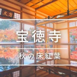 【桐生市】宝徳寺|関東で唯一見れる秋の床紅葉の名所!見頃の時期に行ってきました