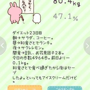 ダイエット23日目(記録)