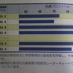 中1。1学期。WAT観点・領域別達成度個人表(学力テスト)の結果。