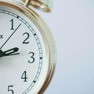 犬は時計は読めないのに、時間がわかる?