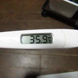 「体温測定」と「血圧測定」 毎朝の健康チェック&新型コロナウイルス感染拡大を抑止!|9月22日(火)