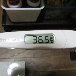 「体温測定」と「血圧測定」 毎朝の健康チェック&新型コロナウイルス感染拡大を抑止!|9月24日(木)