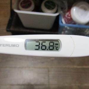 「体温測定」と「血圧測定」 毎朝の健康チェック&新型コロナウイルス感染拡大を抑止!|9月25日(金)