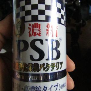 サンミューズの「濃縮PSB」を買ってみた!