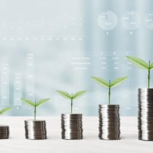 楽天証券の投資信託でポイント投資をしています。4か月間の実績をご報告。