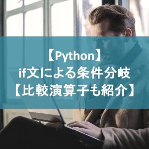 【Python】if文による条件分岐【比較演算子も紹介】